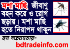Awareness About Mosquito